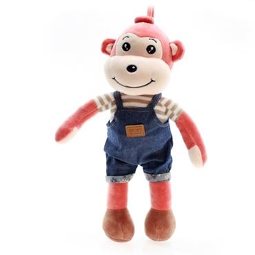 تصویر میمون لباس دار